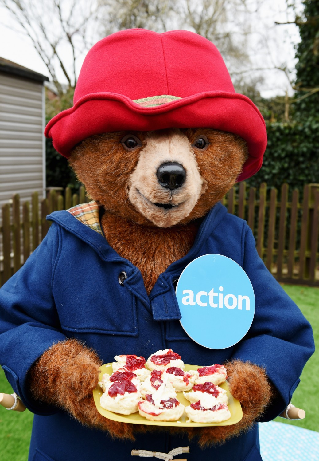 Paddington came with cream teas 2016